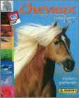 chevaux-1.jpg